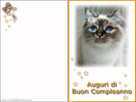 Famoso Frasi Di Buon Compleanno Sorella WV52 » Regardsdefemmes HA49